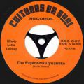 The Explosive Dynamiks, Whole Lotta Loving