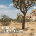 V/A, Down In The Valley Vol. 1